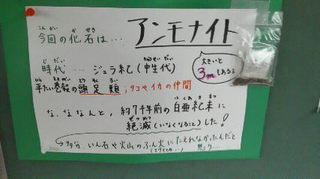201306101439001.jpg